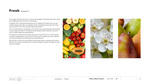Pear-a-Dime Brand and Website #02 by Eric Chimenti