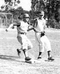 Chapman College baseball game at W. O. Hart Park, Orange, California