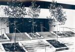 Entrance, Hutton Sports Center, Chapman College, Orange, California