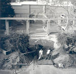 Renovating the old Student Union patio, Chapman College, Orange, California, 1973