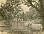 Park in Calcutta, India, 1922