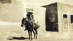 Carl Louis Gregory on a donkey in Mexico, 1905