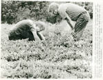 Jimmy Carter with brother Billy, Carter Peanut Farm