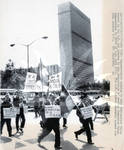 Demonstrators at U.N.