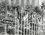 131 Flags of U.N., First Avenue
